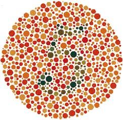 Ishihara testplaat voor lenzen bij kleurenblindheid